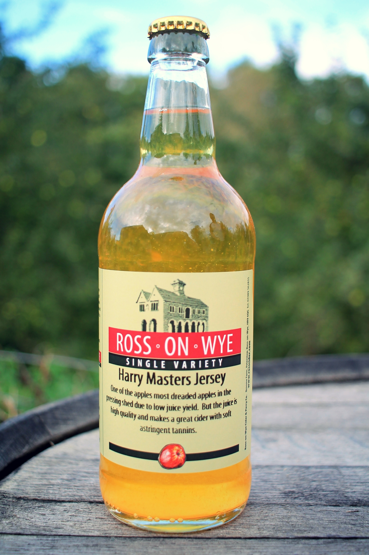 Harry Masters Jersey Cider